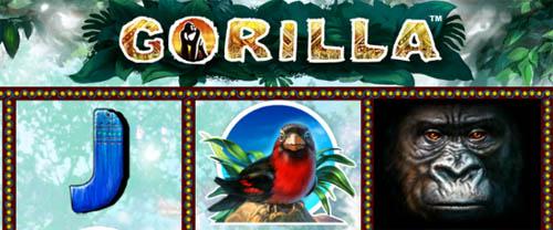 online slot machine gorilla spiele