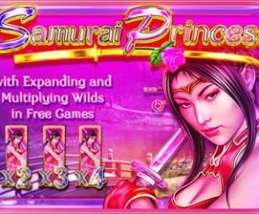 Samurai Princess Slot Machine Online ᐈ Amaya™ Casino Slots