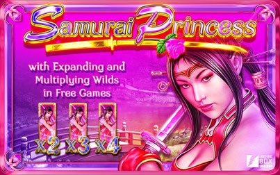 Samurai Princess Slot Machine Online ᐈ Amaya™ Casino Slots